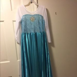 Other - Queen Elsa dress